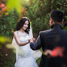 Wedding photographer Dmitriy Shpak (dimak). Photo of 24.02.2016