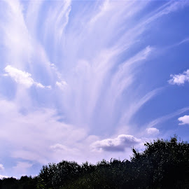 by Anthony Hutchinson - Landscapes Cloud Formations (  )