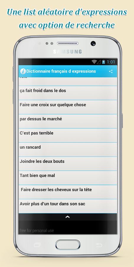 french phrases dictionnary- screenshot