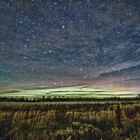Aurora appearing over Crex Meadowlands by Peter Stratmoen - Landscapes Starscapes ( crex meadowlands, wisconsin, northern lights, aurora borealis, long exposure, nikon,  )