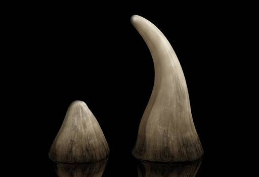Rhino horn worth R115m disguised as 'fine art' seized at OR Tambo airport - SowetanLIVE