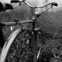 BIcicletta e catena, compagni inseparabili  di