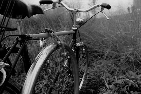 BIcicletta e catena, compagni inseparabili  di Principiante2018