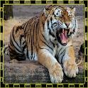 Animal Quiz Games Picture Quiz icon