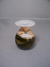 Photo: Gozo sea shell