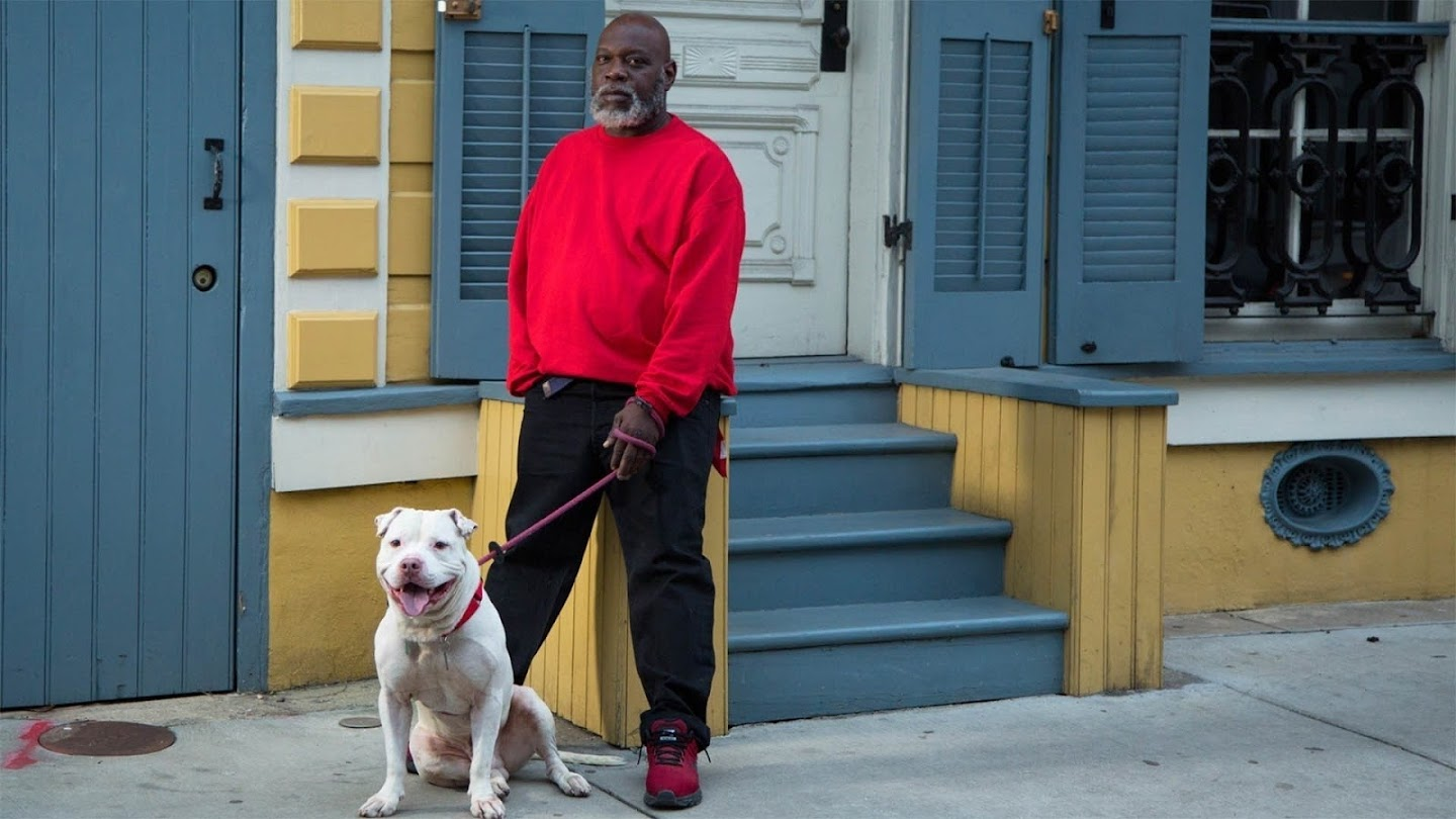 Pit Bulls & Parolees: Looking for a Home