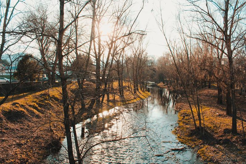 Acqua, fonte di vita  di sb_fotograf
