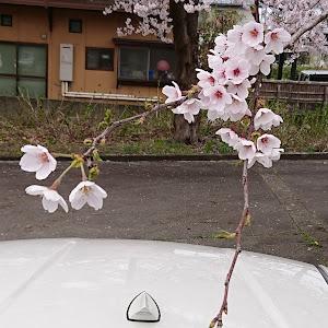 86のカスタム事例画像 hikaru4157   /  T.Lさんの2019年04月27日21:16の投稿