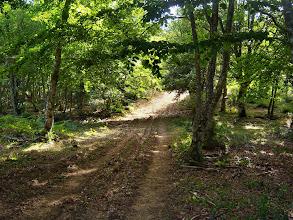 Photo: Camino hacia la Magdalena