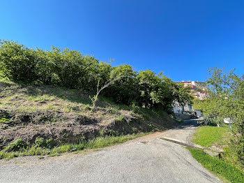 terrain à batir à Cervione (2B)