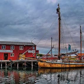 The harbor by Richard ten Brinke - Transportation Boats