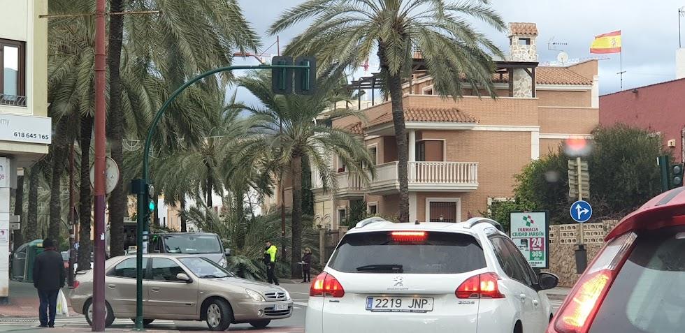 Palmera caída en la Avenida Cabo de Gata, en Almería capital.