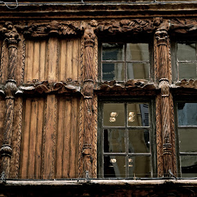 Woodhouse by Cristiana Chivarria - Buildings & Architecture Architectural Detail ( building, window, france, macon, woodhouse, historic )