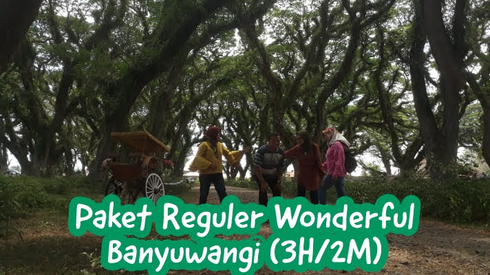 https://www.teratnt.com/2019/01/wonderful-banyuwangi-3-hari-2-malam.html