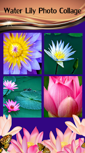 Water Lily Photo Collage - náhled