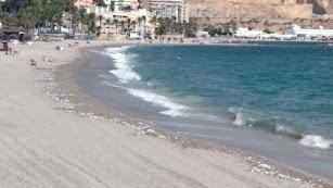 Peces muertos repartidos a lo largo de la playa de Aguadulce.