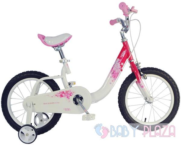 Xe đạp RoyalBaby RB-19 4