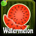 Watermelon GO Keyboard icon