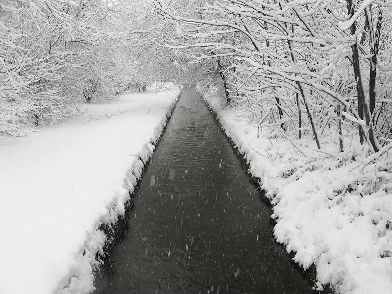 Neve sul fontanile di angelo27