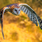 Owl in Flight-2-Edit.jpg