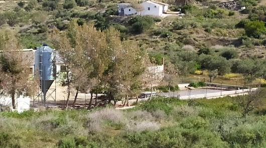 Los vecinos de El Cañico llevan 95 días sin agua y sin noticias del Consistorio