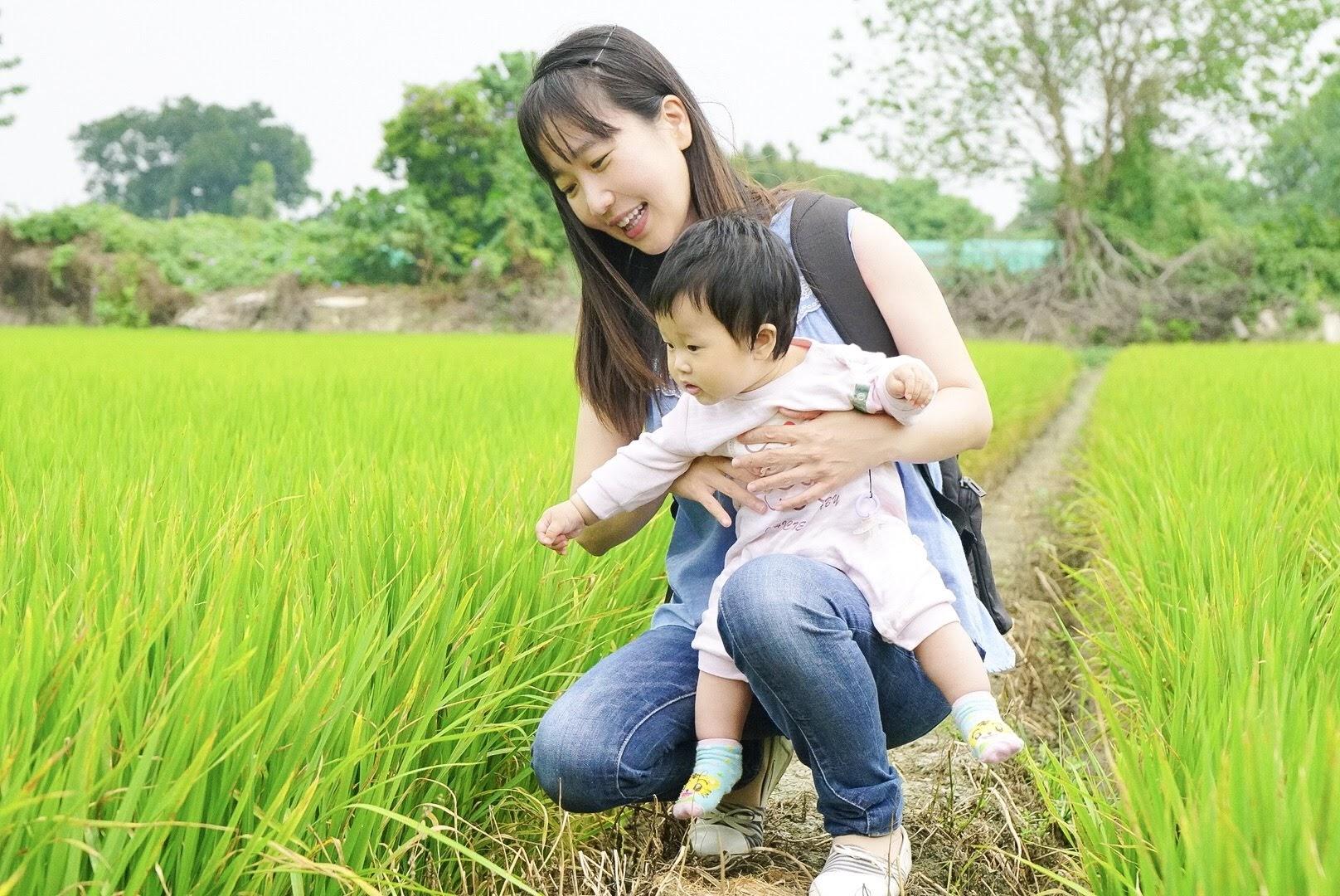 【旅行】整片綠油油的田園之旅-親子輕旅行