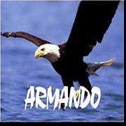 Remis Armando San Miguel 1.4-armando Icon