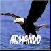 Remis Armando San Miguel Icon