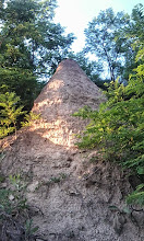 """Photo: So-called """"beehive stone"""", natural formation near Ostoros, Hungary (2014)"""