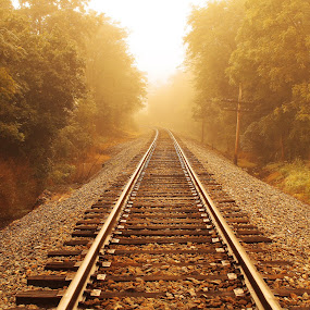 Summer Fog by Aaron Shaver - Landscapes Weather ( warm, fog, mood, train, summer, lines, tracks, light, , path, nature, landscape )