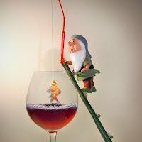 A pesca nel vin rosso !!!! di