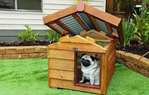 Dog House Design- screenshot thumbnail ...