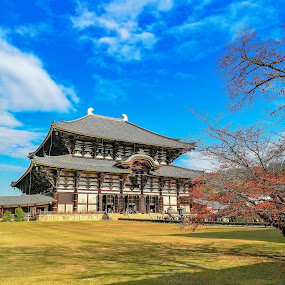 Temple in Nara Japan by Jurich Bitco - Buildings & Architecture Public & Historical ( osaka, japan, nature, temple, historical )