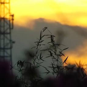 Sunset di depan rumah by Agung Blade - Landscapes Sunsets & Sunrises