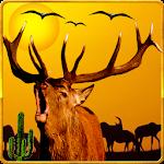 Deer Hunting 2015 Adventure 3D