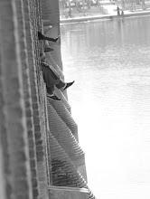 Photo: 33-arkų tiltas Esfehane.   33-arch bridge in Esfehan.
