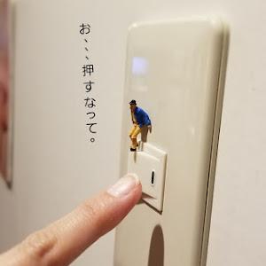 その他  趣味・プライベートのカスタム事例画像 sakura*さんの2018年07月29日00:37の投稿