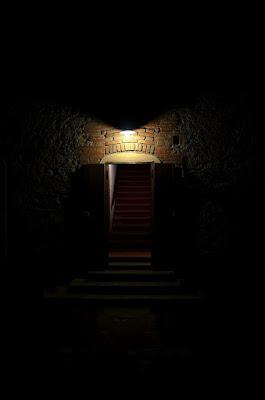 Salire quelle scale? di Wilmanna