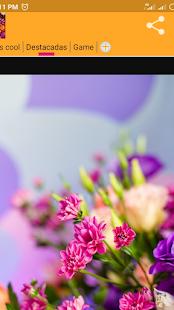 Download Fondos de Flores 4k For PC Windows and Mac apk screenshot 3