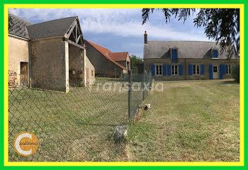 terrain à Châteauneuf-sur-Cher (18)