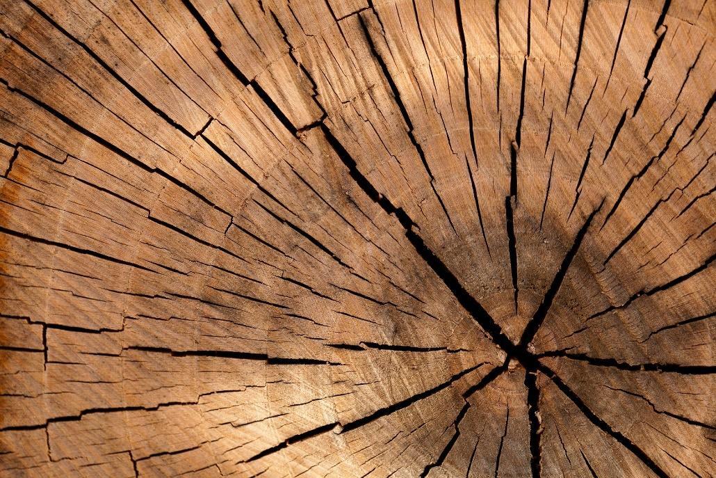 madera-construccion-casas-pasivas