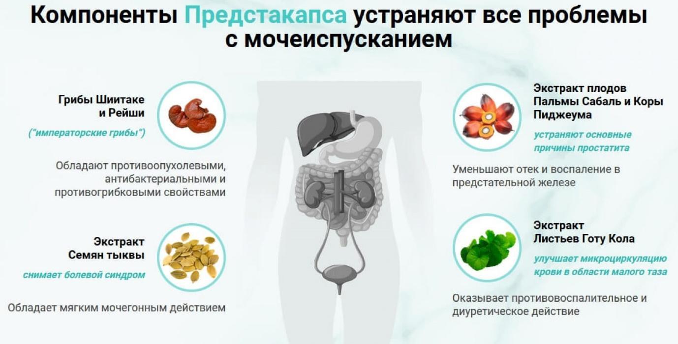https://medobzor24.ru/wp-content/uploads/2021/01/predstocaps-sostav-2048x1041.jpg