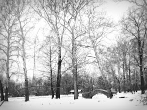 Photo: Black and white photo of trees and stone bridge in the snow at Eastwood Park in Dayton, Ohio.