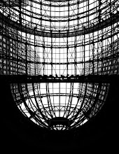 Photo: A shot from inside the Wintergarden in the World Financial Center in New York City. This was taken a couple of years ago, the day was gray and I thought the glass ceiling looked interesting.  http://jameshowephotography.com/blog/2010/09/world-financial-center-winter-garden-new-york-city.html/