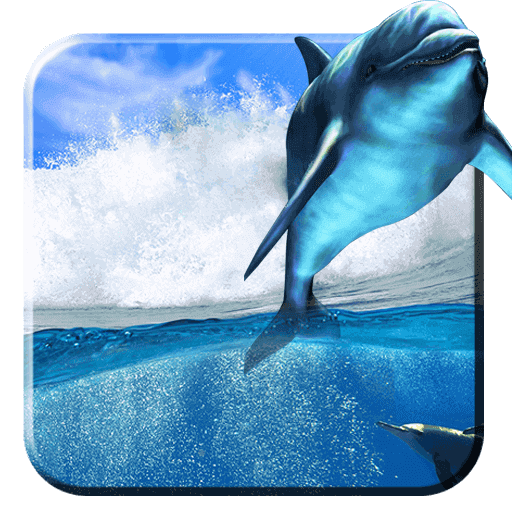 Swimming Live Dolphin