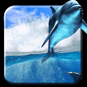 windows 1 0 wallpaper dolphin - photo #8