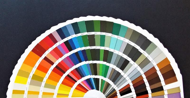 190 sfumature di colore di pandi
