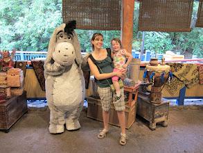 Photo: Eeyore at Disney Animal Kingdom