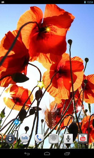 Poppy Magic Flowers LWP