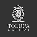 Detector COVID-19 Toluca icon